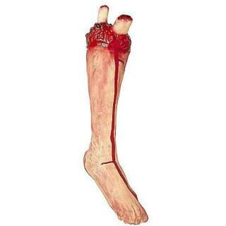 Morceau de jambe coupé