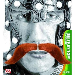 Moustache viking rousses
